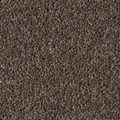 bailey night stone 235x235 - Bailey