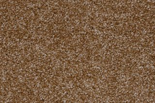 Dalaware Carpets