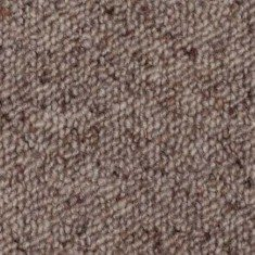 Oyster discounted carpets