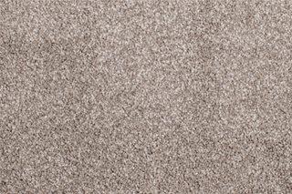 Calluna-Cosmic Carpet Thumbnail
