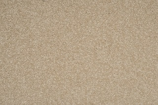Cut Pile Wool Cavalier Bremworth