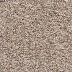 notroose 235x235 - Angus Tweed