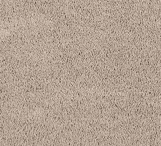 Canvas 235x213 - Devenport twist