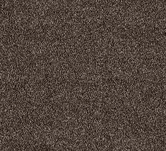 Choco Stipple 2 235x213 - Cornwell Twist