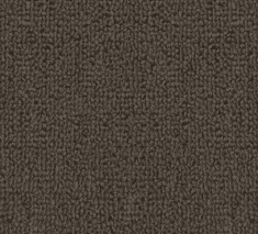 Light Brown 235x213 - Callisto