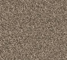 Mussel 3 235x213 - Springlake