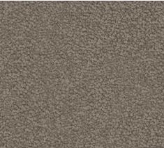 Nutmeg 235x213 - Regal Charm