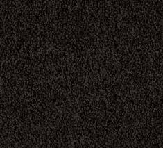 Paua 1 235x213 - Columbia