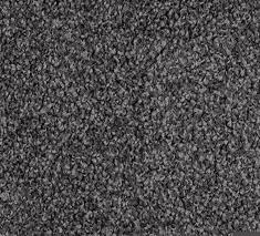 Paua 2 235x213 - Detroit