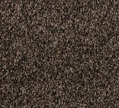 Paua 3 235x213 - Wales Twist
