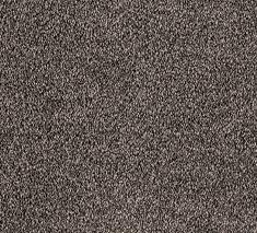 Paua 7 235x213 - Wattle Bay