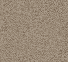 Soft suede 235x213 - Regal Charm