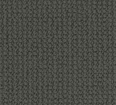 Timber Wolf 1 235x213 - Twyne