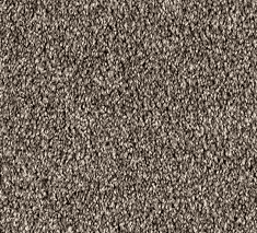 Truffle 1 235x213 - Columbia