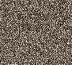 Truffle 2 235x213 - Detroit