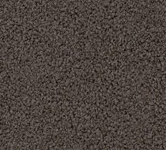 Ursus 235x213 - Calluna