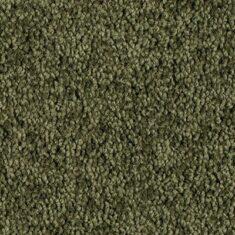 malllard 235x235 - Enchant 48